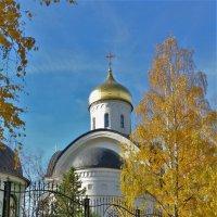 Церковь Святой Евфросинии Московской :: Константин Анисимов