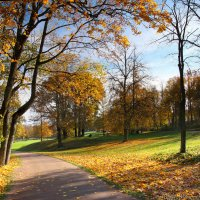 Осень; Парк Александрия; Петергоф :: Laryan1
