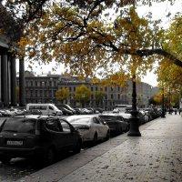 Осень городская :: AleksSPb