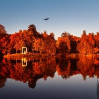 Белкинский Парк :: Mozgovkina