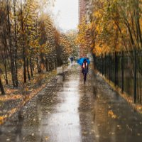 дождь... :: cfysx
