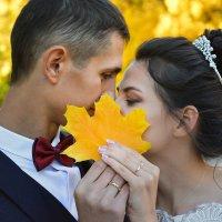 Осенние свадьбы... :: АЛЕКСЕЙ ФОТО МАСТЕРСКАЯ