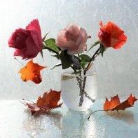 Осенние розы :: Людмила