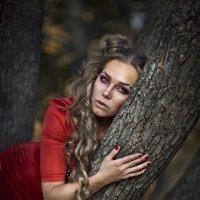 Лесная фея :: Мария Кольцова