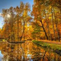 Дуновение осени :: Дмитрий Motorin