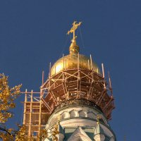 Золото осени. :: Александр Смирнов
