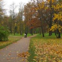 В осеннем парке :: Наталья Герасимова