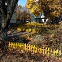 Свет на жёлтом :: Николай Филоненко