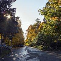 Октябрьское солнце :: Сергей Фомичев