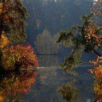 Осень — последняя, самая восхитительная улыбка года :: Ольга Русанова (olg-rusanowa2010)