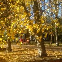 Однажды осенью :: Елена Семигина