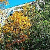 У дома моего :: Raduzka (Надежда Веркина)
