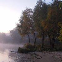 Рассветный туман над рекой... :: Тамара Бедай