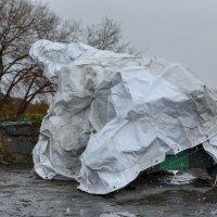 Первый снег :: Валерий Михмель