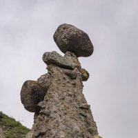 Каменные грибы. :: Юрий Харченко