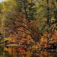 Осень :: Александръ Морозовъ