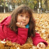 Последние теплые денечки :: Светлана Казмина