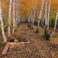 Саратовская осень :: Михаил Пахомов