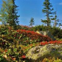 Осенью в горах :: Сергей Чиняев