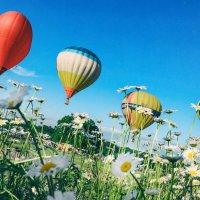 На фестивале воздушных шаров. :: Анатолий Щербак