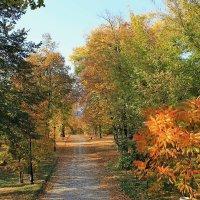 Мариинский парк :: tina kulikowa