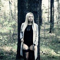 Секреты леса :: Mikhail Bertov