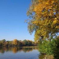 Осень в Киеве :: Лара Амелина