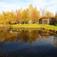 Отражение в пруду :: Андрей Снегерёв