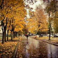 дождливый осений день :: Сергей Кочнев