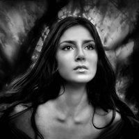 Портрет Светланы... :: Андрей Войцехов