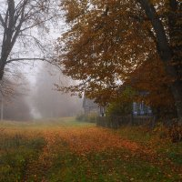 Утро в деревне :: Лариса Савченко