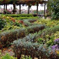 Осенний  сад  в Ротенбурге  на Таубере :: backareva.irina Бакарева