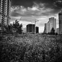 Новый город. :: Иван Владимирович Карташов