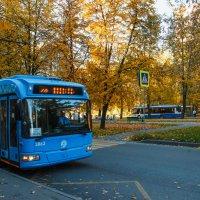 Синий троллейбус :: Nyusha