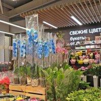 Сначала жене цветы, а внучке  мороженое!(Поход  в  магазин) :: Виталий Селиванов