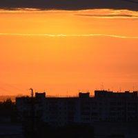 Утро :: Ольга (crim41evp)