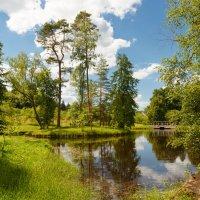 лето в пушкинских горах :: юрий затонов