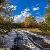 По первому снегу :: Сергей