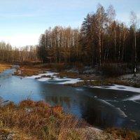 Деревья ожидают снега, разливы рек притихли взаперти… :: Елена Павлова (Смолова)