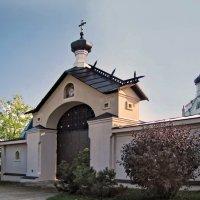 Скит Пюхтицкого монастыря во имя пророка Илии :: veera (veerra)