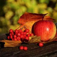 Вкусная Осень.. :: Татьянка ***