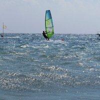 Борьба с ветром :: Татьяна Осипова(Deni2048)