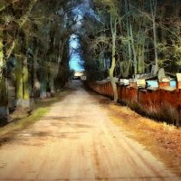 Старая помещичья дорога (рис.) :: Глeб ПЛATOB