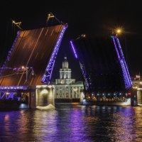 Санкт-Петербург. Дворцовый мост, кунсткамера :: Дмитрий .