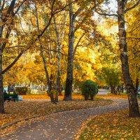 Теплый октябрьский вечер :: Nyusha