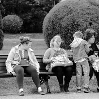 Семейка ... :: Лариса Корж