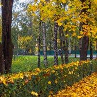 Прогулка по осеннему городу (52) :: Виталий