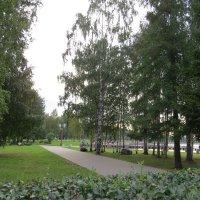 Парк :: Вера Щукина