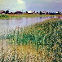 У реки :: Leonid Tabakov