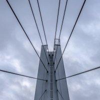 Мост :: Михаил Тищенко